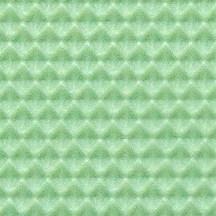 Taffeta (Magnified x16)